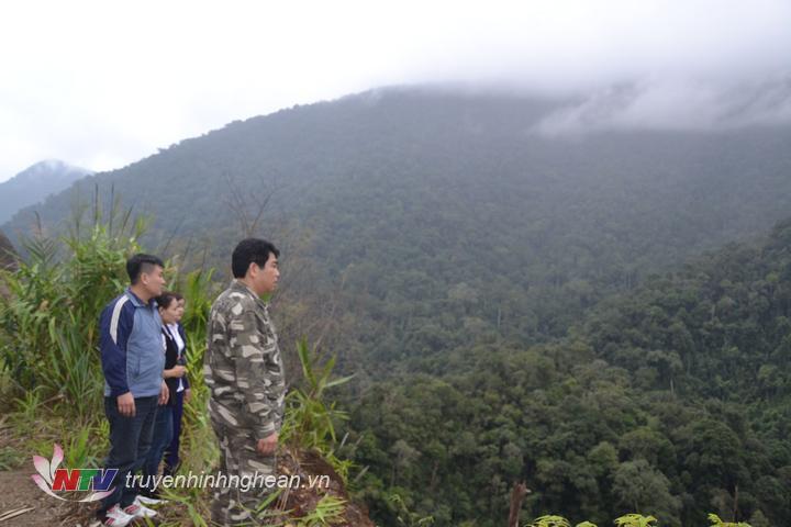 anh 4 hiện nay độ che phủ rừng Con Cuông đạt gần 85%.