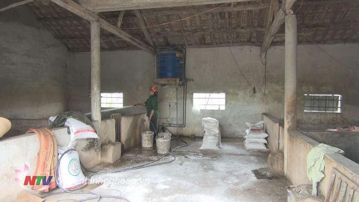 Các hộ chăn nuôi ở Quỳnh Mỹ tiến hành phun thuốc khử trùng, rắc vôi quanh khu vực chăn nuôi.
