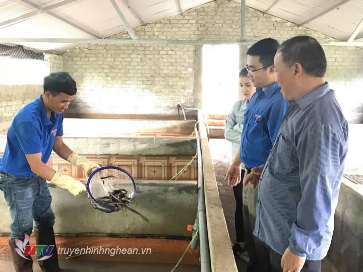 Nhiều đoàn viên trong xã tìm tới tham qua mô hình lươn của gia đình Hưng.