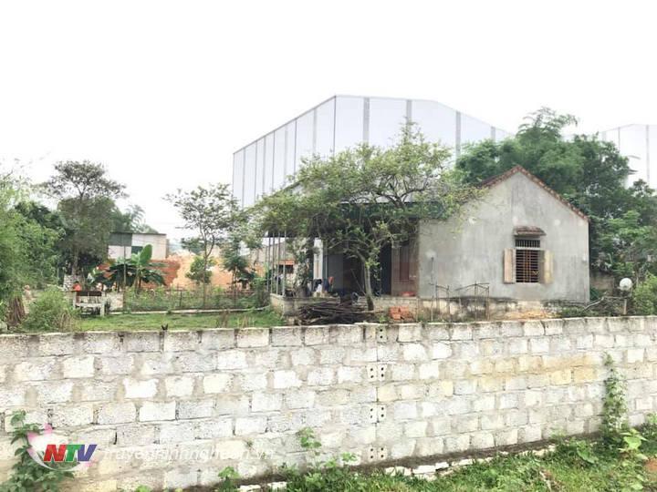 Hộ gia đình ông Vi Văn Mận liên kề với bờ rào nahf máy công ty và là hộ bị ảnh hưởng trực tiếp rất lớn từ nhà máy - cần phải được di dời tái định cư.