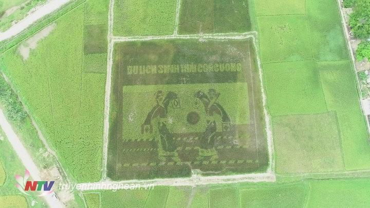 anh3. hình ảnh cánh đồng lúa Đa sắc nhìn từ trên cao được thiết kế với chủ đề cô gái nhảy sạp.