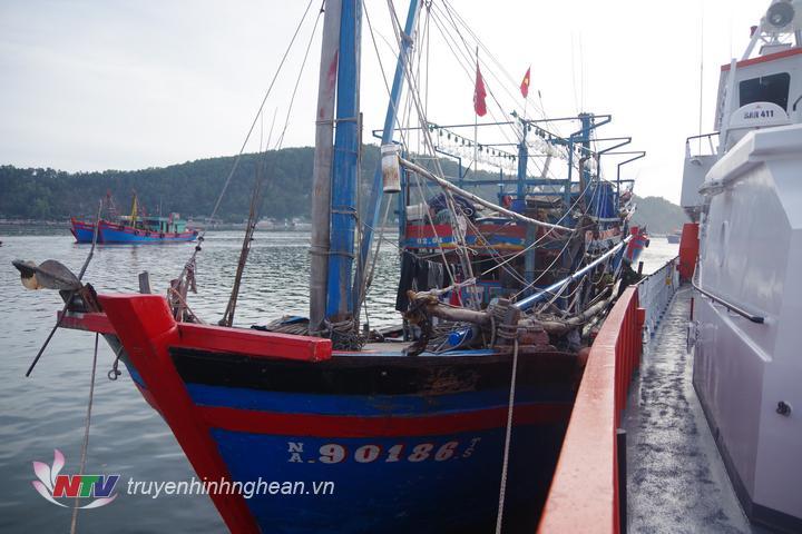 Tàu cá gặp nạn mang số hiệu