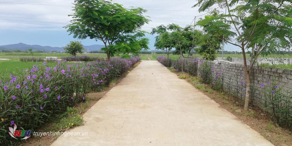 Không chỉ trồng hoa mà các tuyến đường còn trồng các loại cây bóng mát.