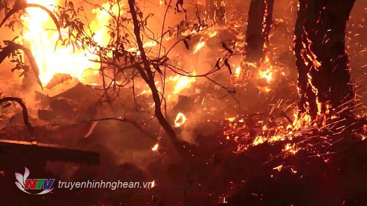 Cháy rừng ở xã Diễn Phú, Diễn Châu vào ngày 26/6.