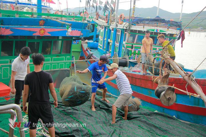 Tại cảng cá Quỳnh Phương và Quỳnh Lập, các tàu thuyền được ngư dân chằng dây neo đậu chắc chắn, sử dụng vỏ lốp ngăn tàu va đập vào nhau và va vào cầu tàu; ngư lưới cụ được vận chuyển hết lên bờ.