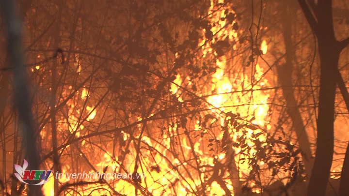 Vụ cháy rừng trên núi Quyết vào tối 17/6. (Tư liệu)