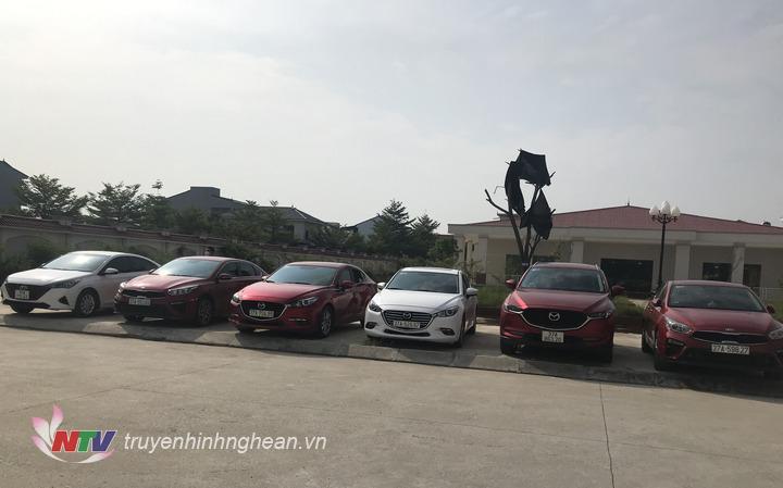 6 xe ô tô là tang vật chuyên án được thu giữ.