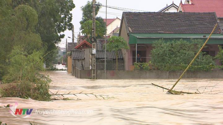 Nhiều nhà dân tại huyện Yên Thành ngạp sâu trong nước.