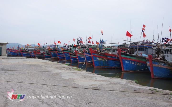 Tàu thuyền của ngư dân đã về neo đậu an toàn tại các bến. (Tư liệu)