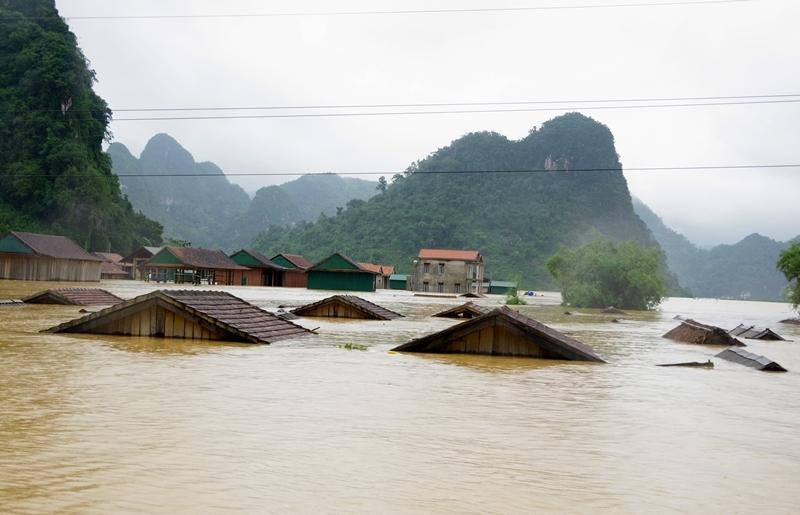 Bão lũ đã làm 235 người chết và mất tích; trên 201 nghìn ngôi nhà bị sập đổ, hư hỏng, tốc mái.