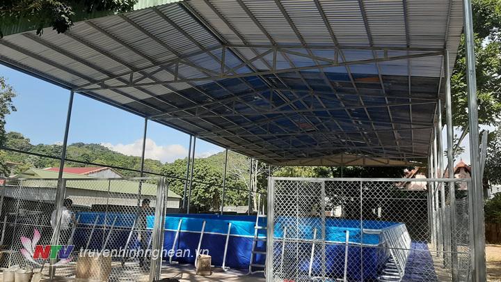 Bể bơi thông minh đầu tiên ở huyện Quỳ Hợp được lắp đặt thí điểm tại trường THCS thị trấn Quỳ Hợp với tổng kinh phí hơn 200 triệu đồng