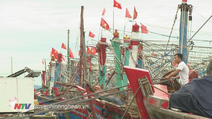 Ngư dân Cửa Lò đưa tàu thuyền vào neo đậu khu vực an toàn.