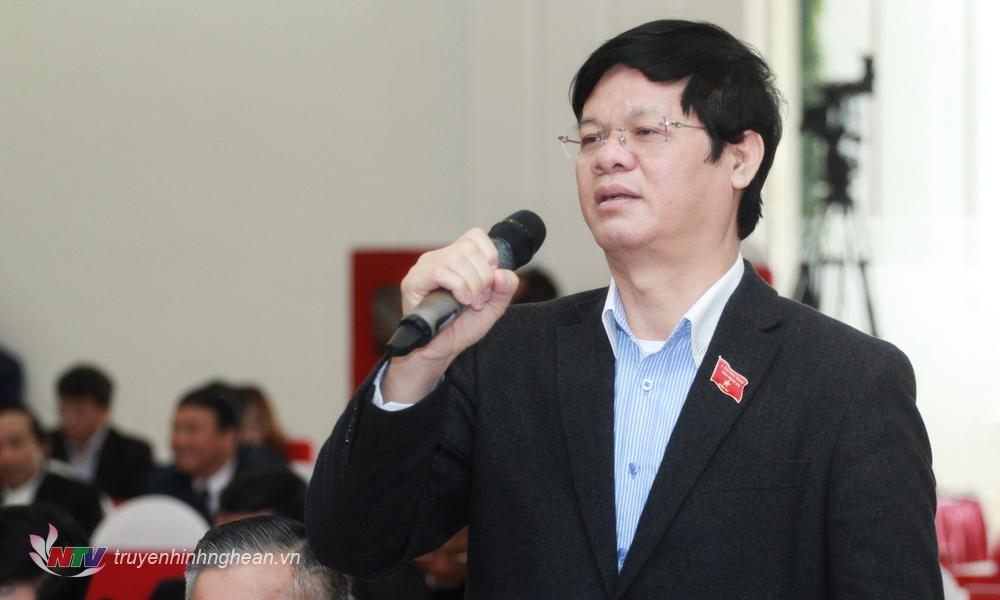 Đại biểu Lê Xuân Đại phát biểu tại phiên thảo luận.