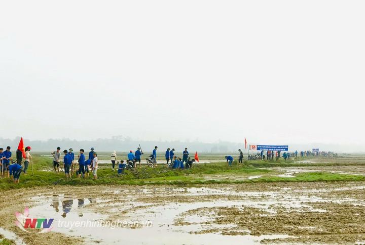 Hàng trăm đoàn viên thanh niên Đô Lương tham gia ngày Chủ nhật xanh.