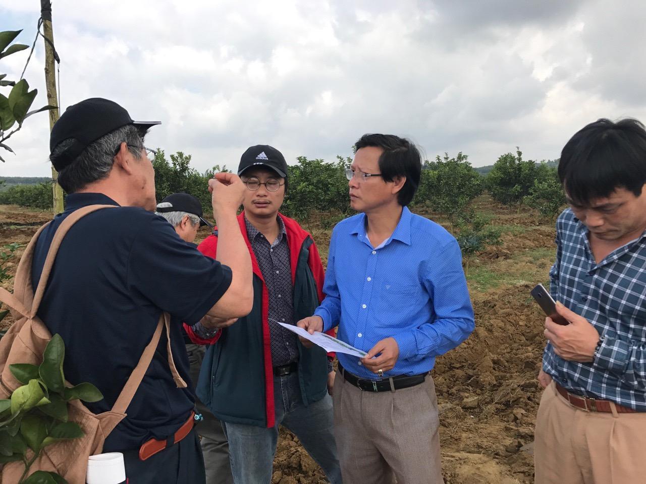 Đoàn chuyên gia Nhật Bản thăm trang trại ông Hoài từ những ngày đầu ươm trồng giống quýt JeJu.