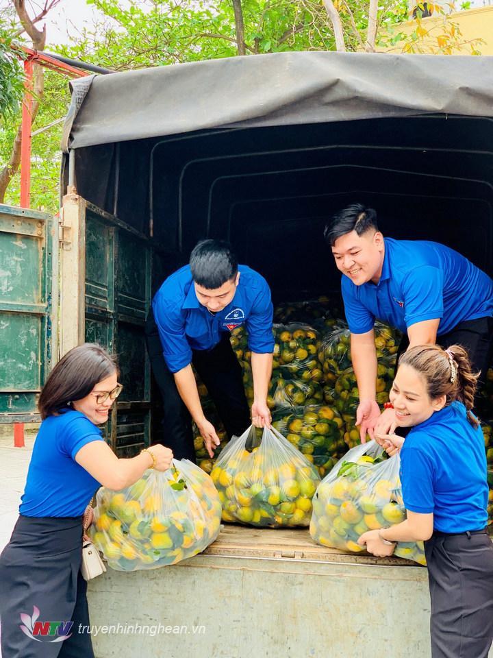 Tuổi trẻ Đài PT-TH Nghệ An phối hợp cùng phường Lê Mao, doanh nghiệp trên địa bàn TP Vinh chung tay giúp bà con huyện Nghĩa Đàn tiêu thụ sản phẩm.