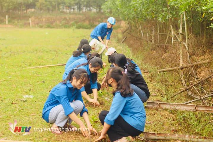 Tuổi trẻ Nghĩa Lâm trồng 200 cây keo tại làng Minh Lâm.