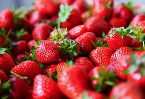 Dâu: Hãy chọn những quả dâu có màu đỏ tươi, có độ bóng tự nhiên, cuống xanh tươi, quả mọng nhưng không quá mềm. Hãy rửa dâu với nước lạnh trước khi thưởng thức. Nếu dâu chưa chín khi bạn mua về, chúng có thể giữ được lâu nhất 7 ngày trong tủ lạnh.