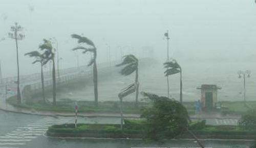 Dự báo năm 2020 sẽ có 11 - 13 cơn bão và áp thấp nhiệt đới trên Biển Đông.