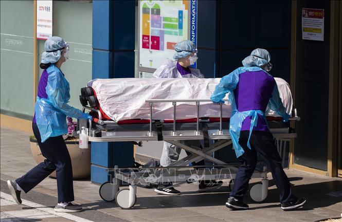Nhân viên y tế chuyển bệnh nhân mắc COVID-19 vào một bệnh viện ở Daegu, Hàn Quốc ngày 4/3/2020.