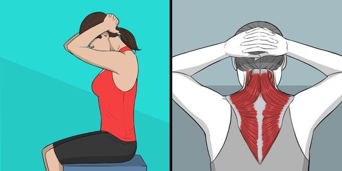 Ngồi thẳng lưng, hai tay lồng vào nhau để sau đầu. Kéo đầu cúi về phía trước sao cho kéo giãn vùng cổ, vai, gáy và lưng. Giữ trong 5 giây rồi thả lỏng về tư thế ban đầu. Lặp lại động tác 8 lần.