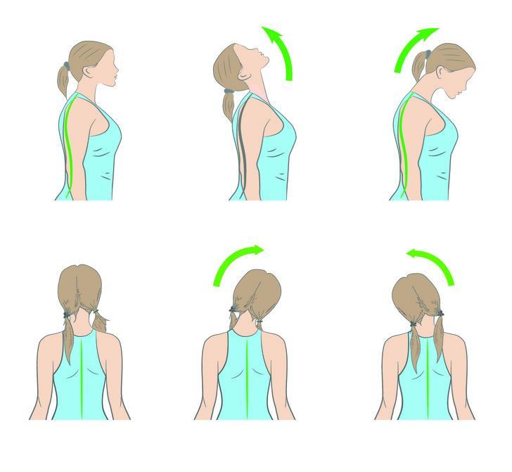 Vận động cổ: Bài tập này có 2 động tác và bạn luôn phải giữ thẳng lưng khi tập. Thứ nhất, bạn cúi đầu để cằm chạm ngực và giữ trong vòng 15 giây. Sau đó, nâng cằm lên trở lại và ngửa đầu về phía sau trong vòng 15 giây. Thứ hai, nghiêng đầu lần lượt sang trái rồi sang phải và giữ nguyên ở mỗi bên trong vòng 30 giây. Thực hiện 2 động tác này khoảng 10 lần để ngăn tình trạng căng cơ và đau ở cổ gáy.