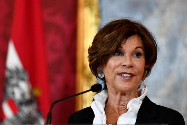 Chánh án Tòa án Hiến pháp Brigitte Bierlein làm thủ tướng tạm quyền.