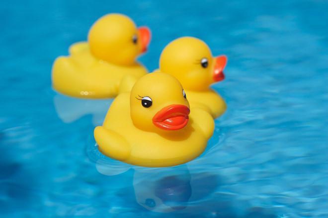 Vịt cao su là loại đồ chơi được khuyến cáo chứa chất gây ung thư.