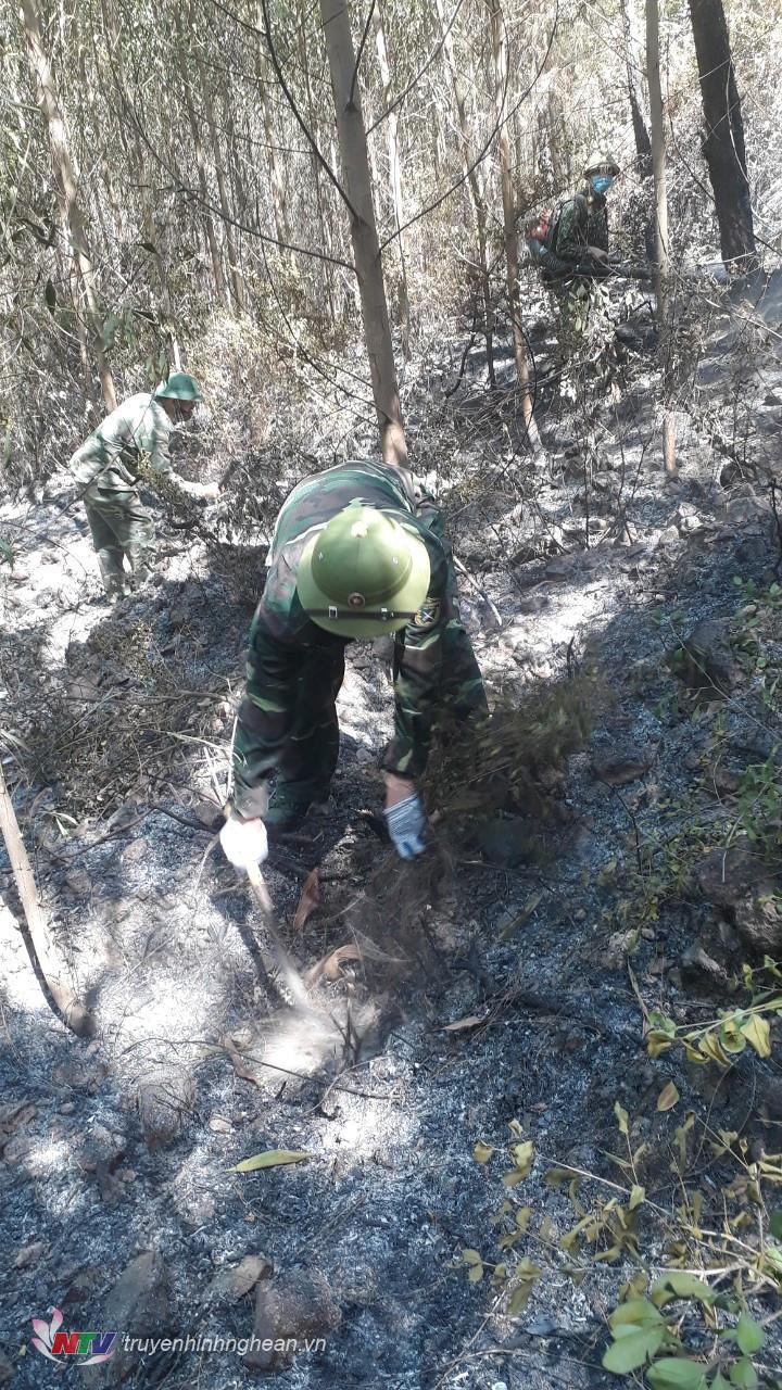 Lực lượng BĐBP dọn thực bì phòng đám cháy bùng phát trở lại