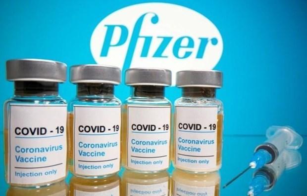 Vaccine ngừa COVID-19 do hãng Pfizer (Mỹ) phát triển. (Ảnh: Reuters)