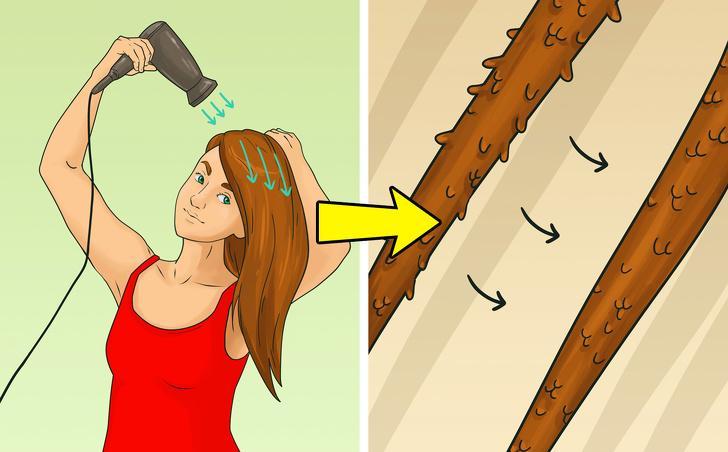 Chọn sai hướng gió của máy sấy: Hãy sấy tóc theo chiều từ chân tóc đến ngọn tóc, theo hướng mọc của tóc. Nếu bạn sấy theo hướng ngược lại, các vảy cấu thành lớp biểu bì sẽ mở ra, dẫn đến tóc bị uốn dợn và dễ bị rối. Nếu bạn sấy tóc theo chiều từ chân đến ngọn, các vảy sẽ khít vào nhau và tạo độ bóng tự nhiên cho mái tóc.