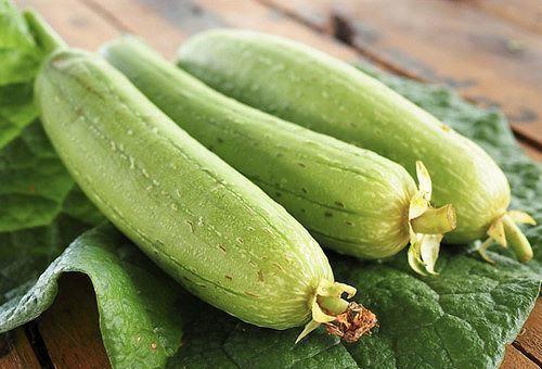 Lá mướp (dùng lá bánh tẻ), thu hái quanh năm, để tươi hoặc phơi khô. Dược liệu có vị đắng, chua, tính hơi lạnh, có tác dụng thanh nhiệt, chống viêm, giảm ho, giải độc, tiêu thũng…