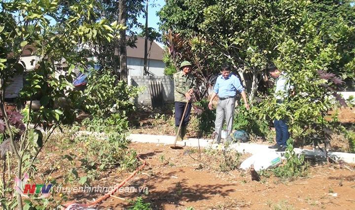 Việc hỗ trợ nhằm xây dựng những hạng mục thiết yếu cho vườn chuẩn