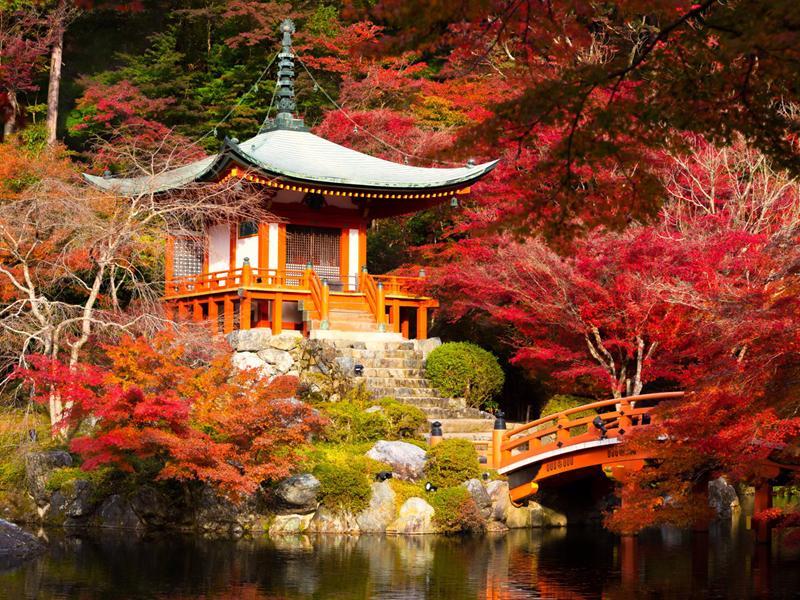 Kyoto, Nhật Bản: Hai lần được bình chọn là thành phố du lịch tốt nhất thế giới với những món ăn hấp dẫn cùng kiến trúc lạ thường của các ngôi đền.