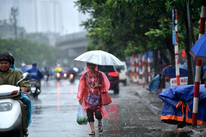 Do ảnh hưởng của bão, nhiều nơi có mưa, mưa vừa, có nơi mưa to đến rất to.