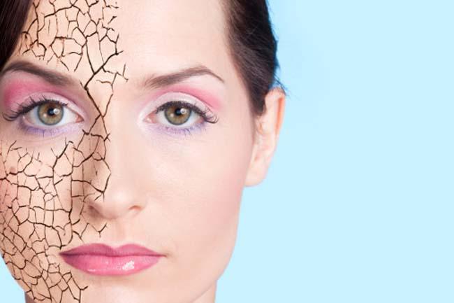 Da khô: Cấu trúc phân tử nhỏ của lựu giúp các chất dinh dưỡng dễ dàng ngấm vào da. Hơn nữa, lựu cấp ẩm cho da và ngăn ngừa sự mất nước nhờ có chứa axit pucinic, một loại axit béo omega-5.