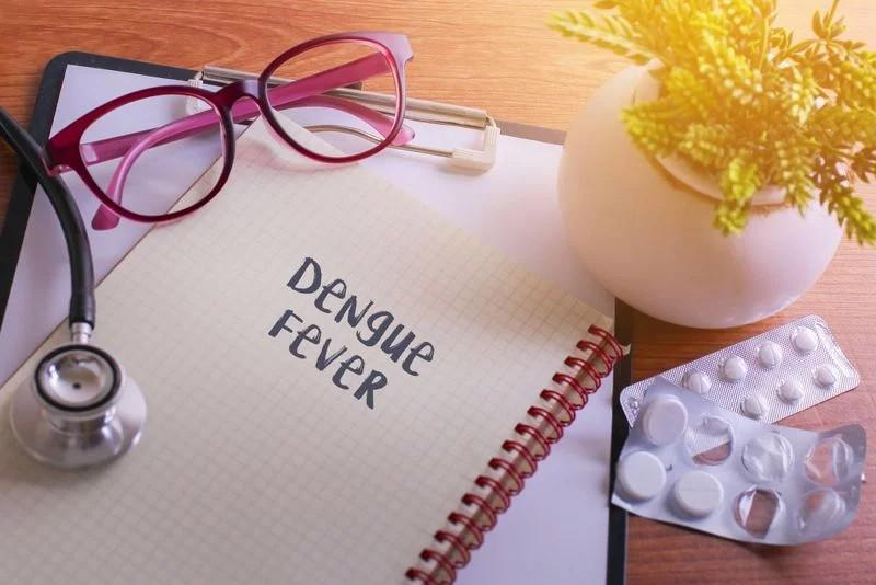 Chảy máu mũi và lợi: Một số bệnh nhân sốt xuất huyết còn bị chảy máu mũi và lợi. Trong hầu hết các ca bệnh, tình trạng chảy máu mũi thường lành tính, nhưng có thể tái diễn. Tuy nhiên trong một số ca hiếm, chảy máu cam có thể nghiêm trọng đến mức cần truyền máu. Chảy máu mũi ồ ạt là một dấu hiệu cho thấy bạn cần đến gặp bác sĩ ngay.