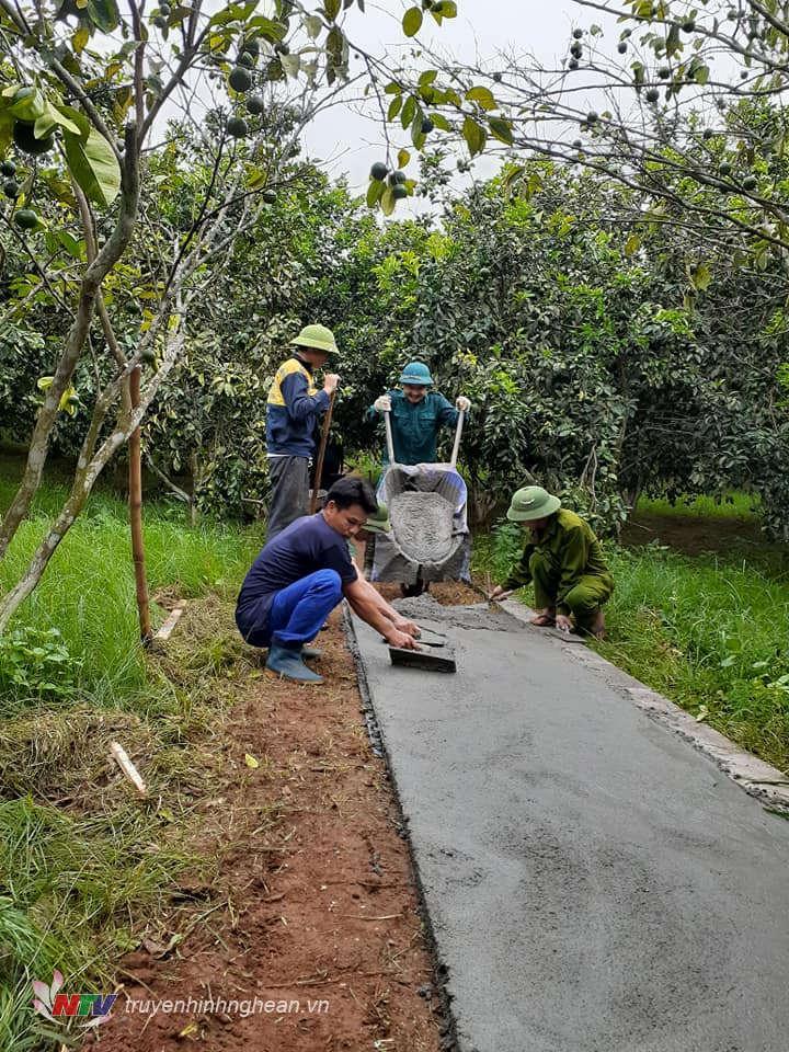 Hỗ trợ đổ đường bê tông nội vườn ở Nghĩa Đức