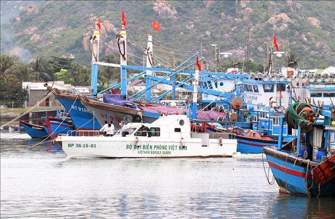 Lực lượng chức năng huyện Ninh Hải (Ninh Thuận) kiểm tra, hướng dẫn tàu thuyền vào neo đậu tránh bão số 5 tại cảng cá Ninh Chữ.