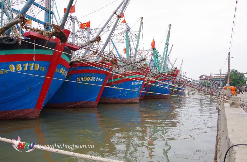Các phương tiện của ngư dân Nghệ An đã về neo đậu an toàn tại bến