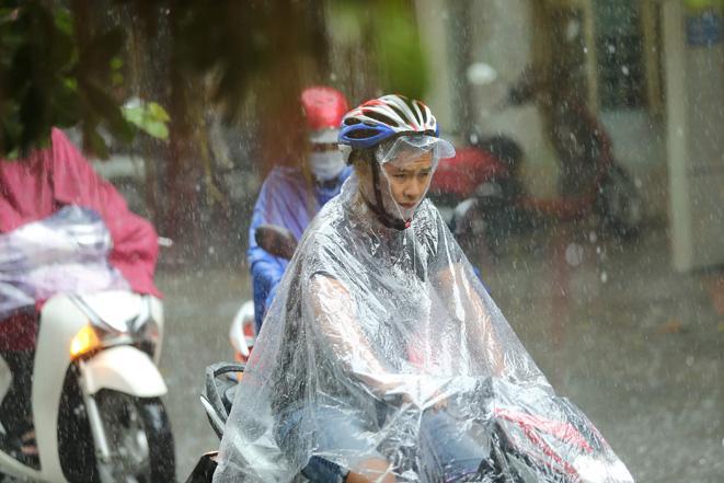 Do ảnh hưởng của dải hội tụ nhiệt đới các tỉnh Đà Nẵng, Quảng Nam và Ninh Thuận có mưa vừa, mưa to, có nơi mưa rất to.