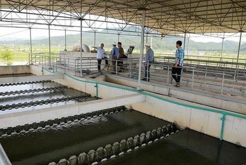 Một cơ sở cung cấp nước sạch cho thành phố Vinh