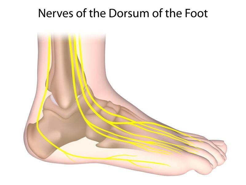 Viêm dây thần kinh ngoại biên: Đây là bệnh do tổn thương các dây thần kinh ở chi, dẫn đến giảm dẫn truyền các tín hiệu thần kinh đến não. Bệnh này gây ra các triệu chứng như đau đớn, mất cảm giác và lạnh bàn chân.