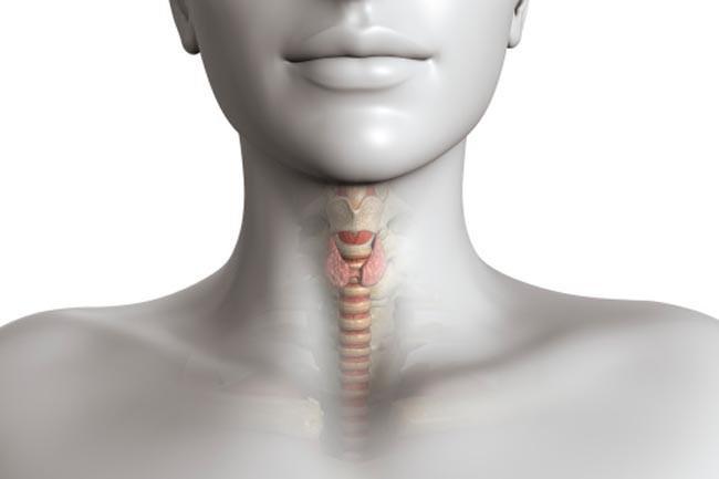 Suy giáp: Các bệnh về tuyến giáp, nhất là bệnh suy giáp, có thể gây các vấn đề về trí nhớ. Các bệnh này cũng có thể ảnh hưởng đến giấc ngủ và dẫn đến trầm cảm, khiến cho người bệnh hay quên.