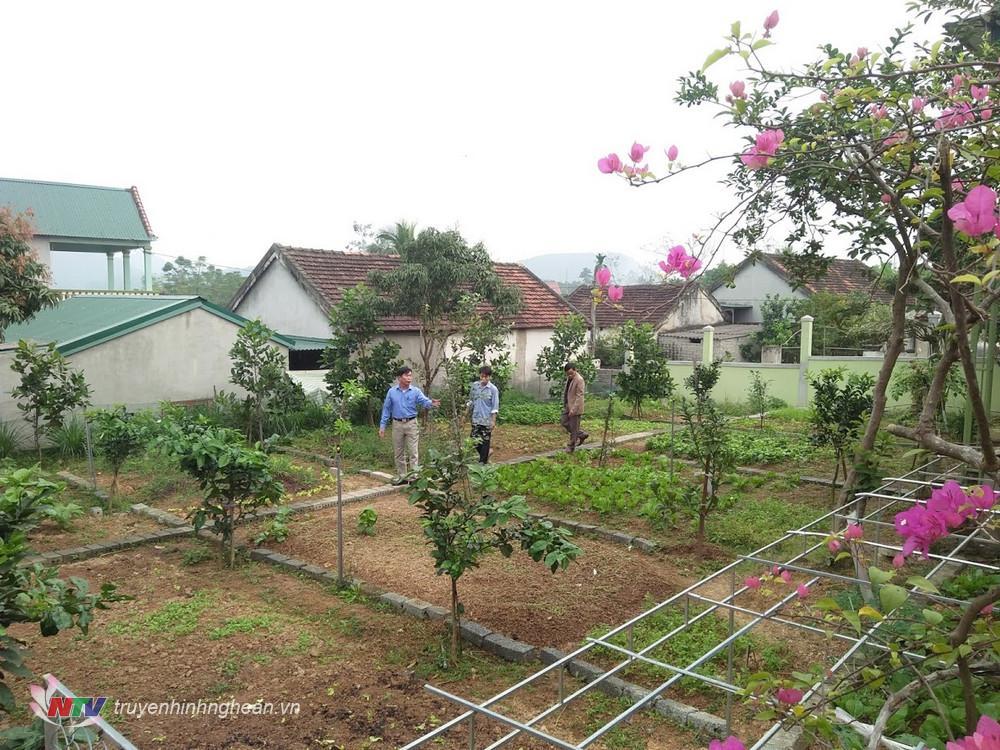 7.100% các vườn hộ được cải tạo lại đều bố trí diện tích nhất định để trồng rau xanh theo hướng đảm bảo an toàn vệ sinh thực phẩm.